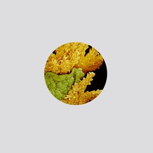 Wild flower petal, SEM Mini Button