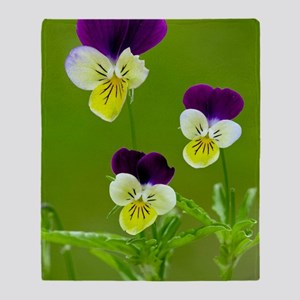 Wild pansy (Viola tricolor) Throw Blanket
