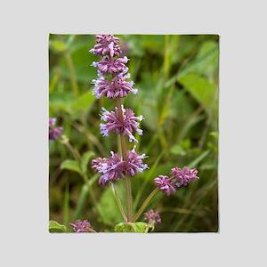Whorled clary (Salvia verticillata) Throw Blanket