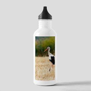 White stork Stainless Water Bottle 1.0L