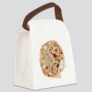 White blood cell, TEM Canvas Lunch Bag