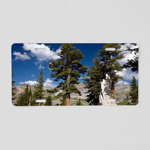 Western white pines (Pinus  Aluminum License Plate