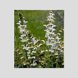 White Clary (Salvia candidissima) Throw Blanket