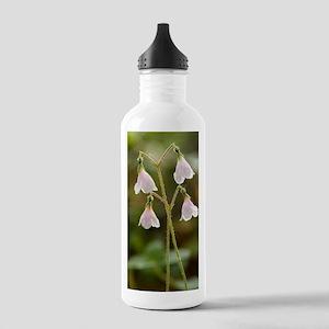 Twinflower (Linnaea bo Stainless Water Bottle 1.0L