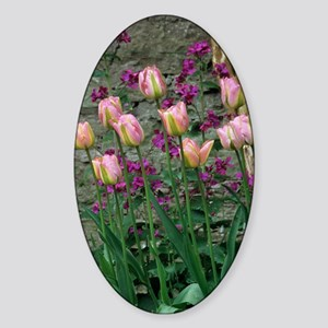 Tulip and honesty flowers Sticker (Oval)
