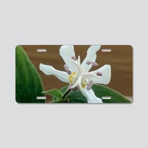 Toad lily flower Aluminum License Plate