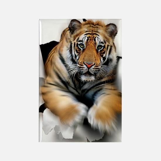 Tiger, artwork Rectangle Magnet
