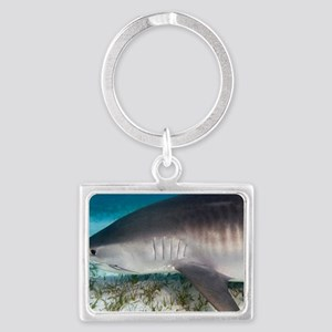 Tiger shark Landscape Keychain