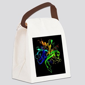 Thrombin protein, secondary struc Canvas Lunch Bag