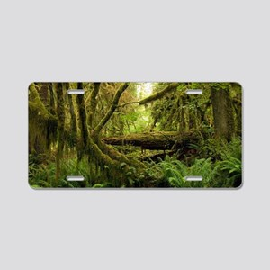 Temperate rainforest Aluminum License Plate