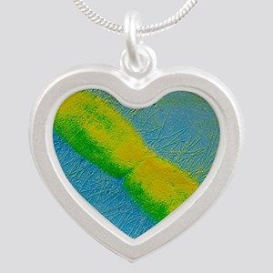 TEM of E. coli bacterium Silver Heart Necklace
