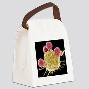 T lymphocytes and cancer cell, SE Canvas Lunch Bag