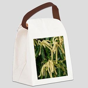 Sweet Chestnut (Castanea sativa)  Canvas Lunch Bag