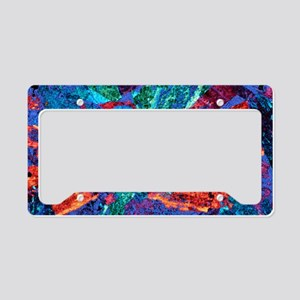 Syenite, thin section, polari License Plate Holder