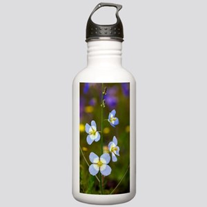 Sunflax (Heliophila re Stainless Water Bottle 1.0L