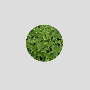 Stinging Nettle (Urtica dioica) Mini Button