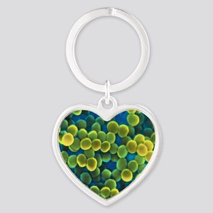 Staphylococcus bacteria Heart Keychain