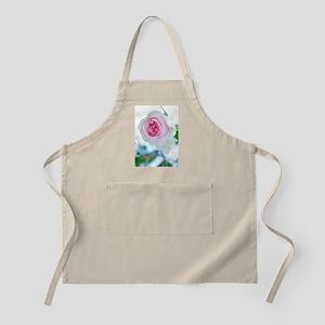Spray rose (Rosa 'Mimi Eden') Apron