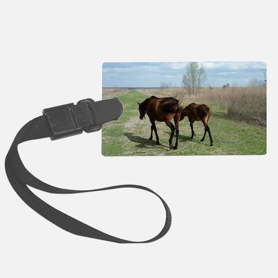 Payne's Prairie Wild Horses Mina Luggage Tag