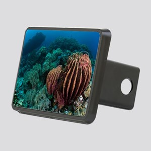Sponges on coral reef Rectangular Hitch Cover