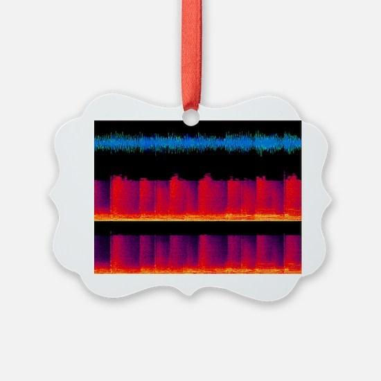 Sound waves, artwork Ornament