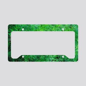 Southern wood (Artemisia abro License Plate Holder
