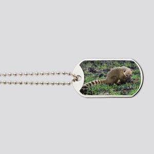 South American coati foraging Dog Tags