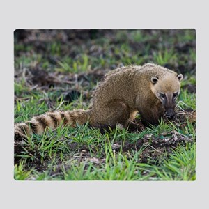 South American coati foraging Throw Blanket
