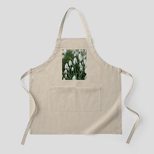 Snowdrop (Galanthus nivalis) flowers Apron