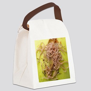 Snake-spotted millipedes Canvas Lunch Bag