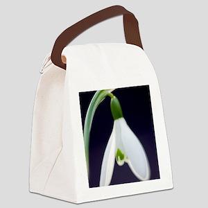Snowdrop (Galanthus nivalis) Canvas Lunch Bag