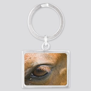 Eye of the Gelding Landscape Keychain