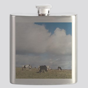 Shire horses Flask