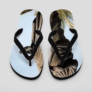 f3486a7f6c1d1 Author Playwright Adult Male Man Caucasian Roman Flip Flops - CafePress