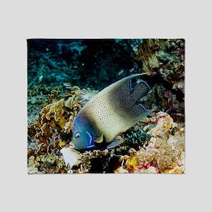 Semicircle angelfish Throw Blanket