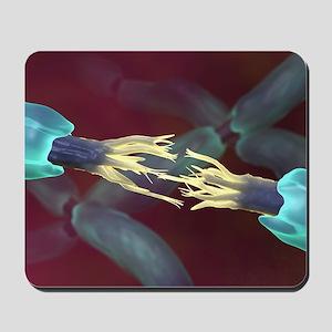 Severed nerve, artwork Mousepad