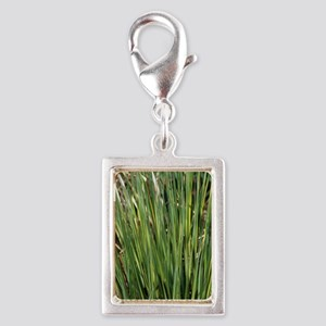 Sedge 'Evergold' Silver Portrait Charm