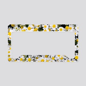 Sea mayweed (Tripleurospermum License Plate Holder