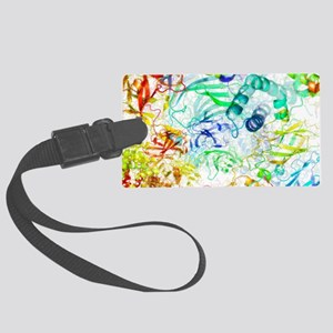 Secondary structure of proteins, Large Luggage Tag