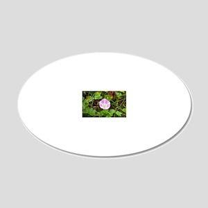 Sea bindweed (Calystegia sol 20x12 Oval Wall Decal