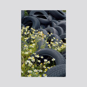 Scentless mayweed amongst dumped  Rectangle Magnet