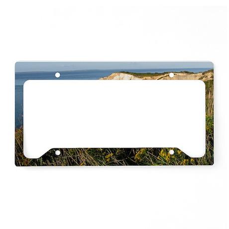 Auinnah Cliffs License Plate Holder