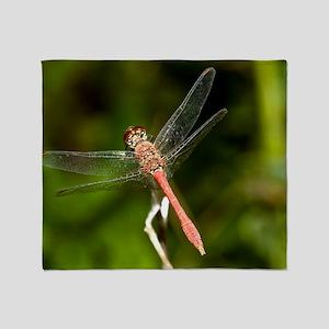 Scarlet dragonfly Throw Blanket