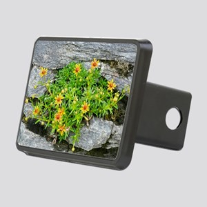Saxifraga aizoides in flow Rectangular Hitch Cover