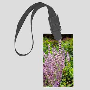 Salvia sclarea var. turkestanica Large Luggage Tag