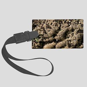 Sabellaria reefs (Fan worms) Large Luggage Tag