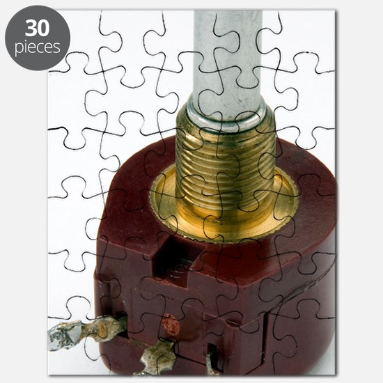 Rotary potentiometer Puzzle