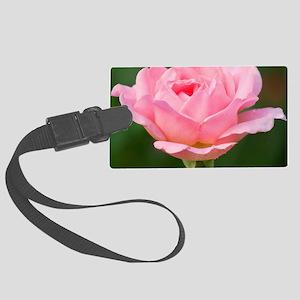 Rose (Rosa sp.) Large Luggage Tag