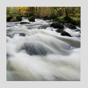 River Teign in autumn, Devon Tile Coaster