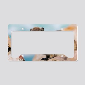 Rock Dassie License Plate Holder